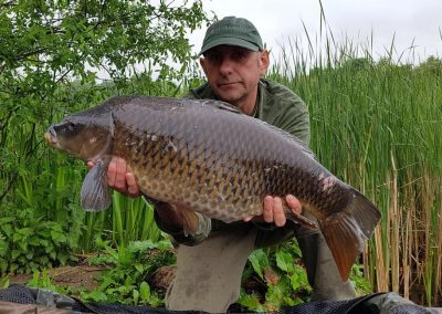 22lb 1oz Common