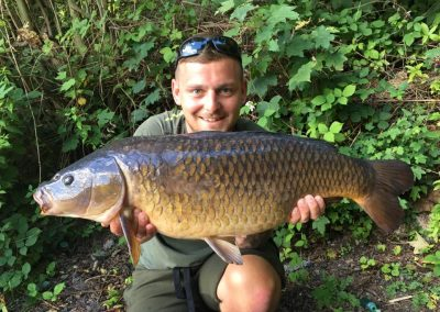 Patch Common 20lb