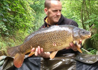 15lb 4oz Common