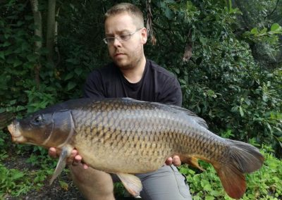 17lb 8oz Common